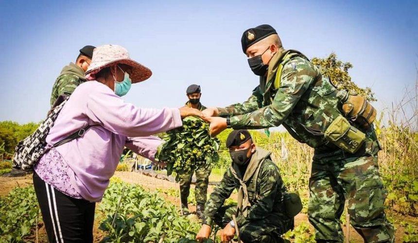 หน่วยทหารลงพื้นที่ฝึกภาคสนาม พร้อมจ่ายตลาด ช่วยเกษตรกรฟื้นฟูเศรษฐกิจ